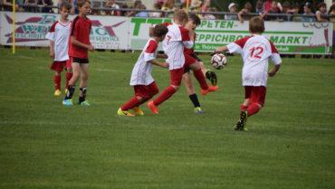Fußball-Grundschulturnier der Landkreise