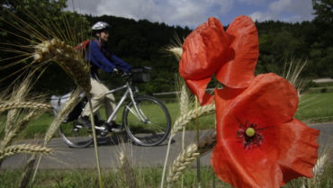 """Aufruf zur Mitarbeit in der AG """"Radverkehr"""""""