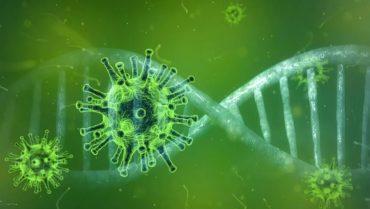 Coronavirus: Gesundheitsamt gibt  Überblick zu häufigen Fragen und Antworten